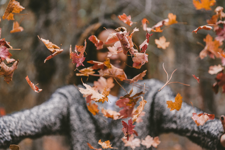 秋と落ち葉